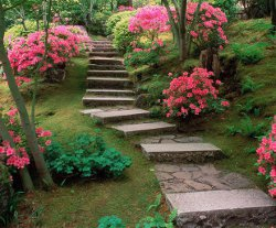 Garden preparation, inexpensive ideas